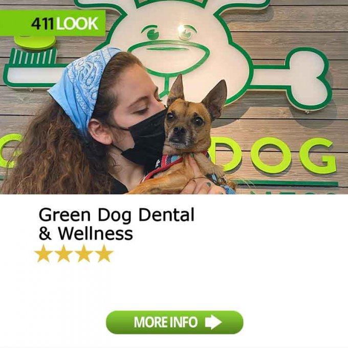 Green Dog Dental & Wellness